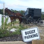 Parking for every kind of horsepower
