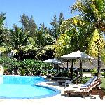 la piscine entourée du jardin et des palmiers