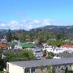 Dunedin from room balcony