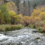 Wider Part of river in Spearfish canyon