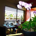Restaurant & Outdoor Cafe