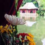 honeymoon suite view