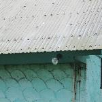 nails heavily in place to prevent roof flying off during hurricane