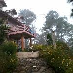 Misty lodge's walk way