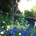Der wunderschöne Garten