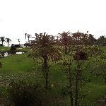 Photo de Shineville Luxury Resort