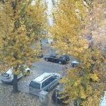 view from window, quiet street