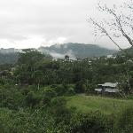 Cloud forest view in Mindo