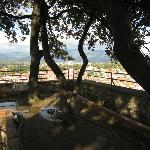 Garden at the top of Guignini Tower--Medieval decadence!