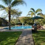 piscine au matin