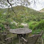 Eco view