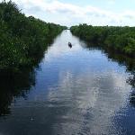 rent your kayak in Flamingo