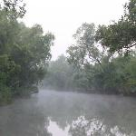 Sundarbans at 6am