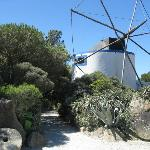 Moinho Dom Quixote Windmill Entrance