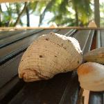 Foto de Seashell Haris Beach Home