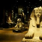 Provided by: Egyptian Museum of Turin