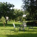 the garden where you can relax