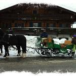 Sleigh ride starting in village goes through countryside