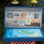 Welcome to Sanibel