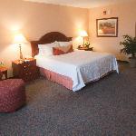 Relaxing Garden Sleep System Adjustable Bed