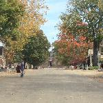 Historical Williamsburg