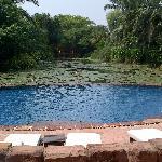 Lagoon Pool area