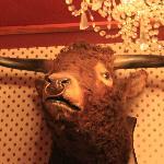 one of many stuffed animals