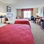 CountryInn&Suites TallahasseeEast GuestRoomDouble