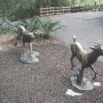 Sculptures at the zoo.