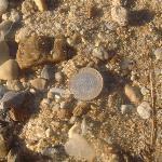 Sand = grit/pebbles
