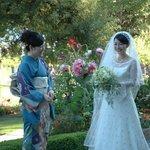 weddings at Hastings House