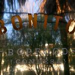 BONITO ~popfood~