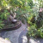 View of Nefatari garden from restaurant