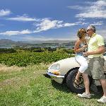 Vineyard tour at nearby vineyard - close to Edgewater in Wanaka