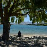 Relaxing by the shores of Lake Wanaka