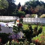 A view of the outdoor garden ceremony setup which you can also see from the reception room.