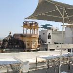 Rooftop monkey chill zone