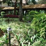 Internal Gardens