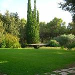 Une pelouse bien verte, très rare dans le sud!