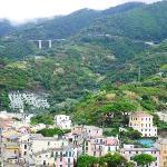 Monterosse