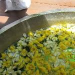 wonderful flower bath