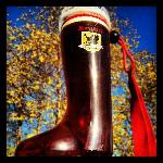 Madison's home for world class Sprecher craft beer!