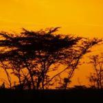 Sundowners with Sunset