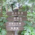 公園内風景