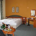 Photo of Hotel Villa Regent