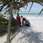 beach and beach boys
