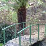 Glenlusk Gardens Foto