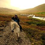 Horse riding along the river