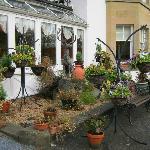cramped front 'garden'