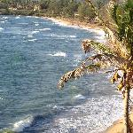 View from lanai #306